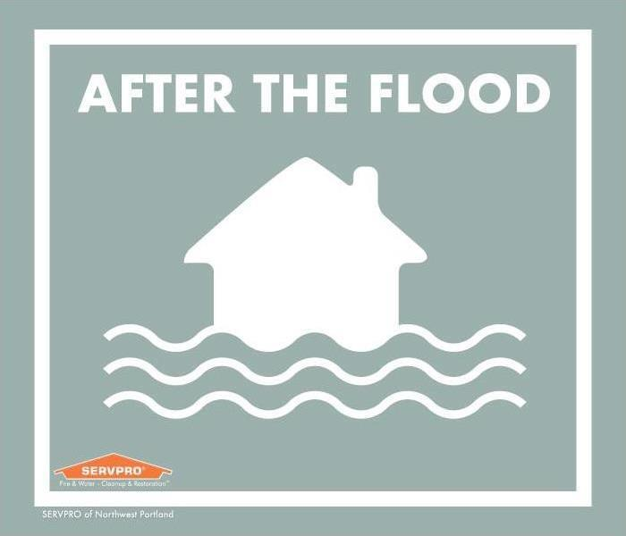 "White house graphic with three wavy lines like water, a light grey background. Text reads: ""After the flood"""