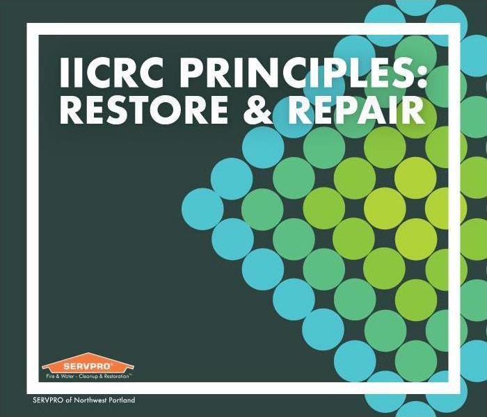 "green and blue dots in diamond shape. Text reads: ""IICRC principles: restore & repair"""
