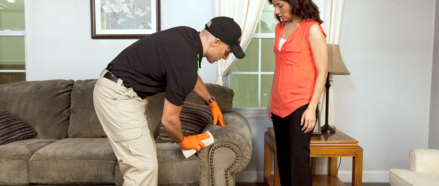 Portland, OR carpet upholstery cleaning